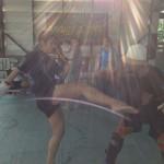 Muay Thai at Sor Vorapin